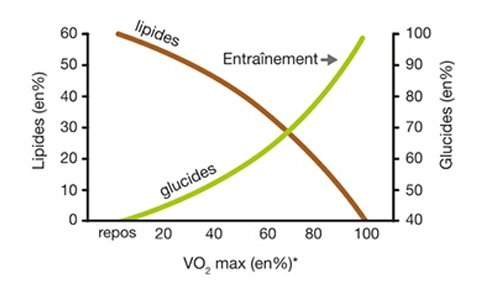 Variations Glucides Lipides en fonction du VO2max